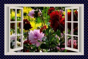a-beautiful-day-775461_1280